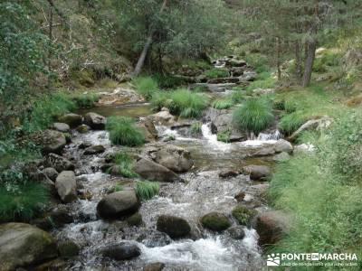Valle del Lozoya - Camino de la Angostura;ruta pedriza montaña madrid
